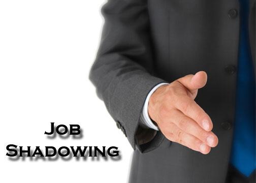 The Real World: AHS and Job Shadows