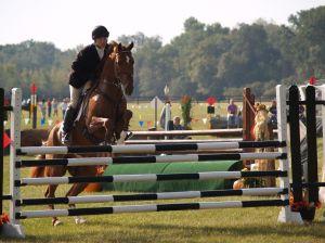 Equestrian State