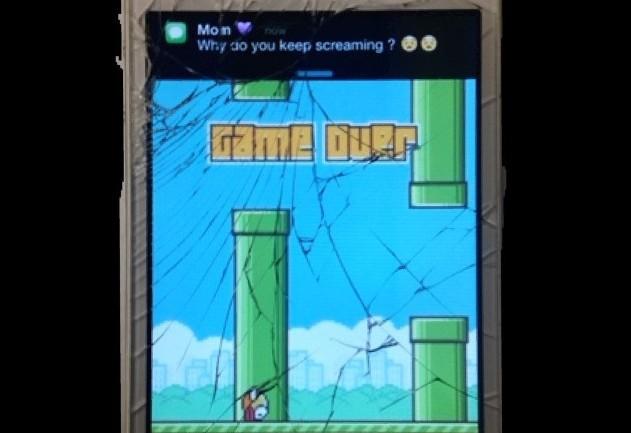 Flappy+Bird%3A+A+Pixelated+Revolution