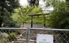 Lithia's Redesign of the Japanese Garden